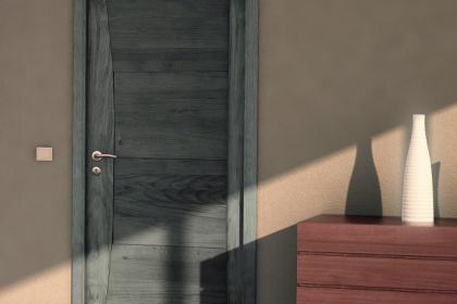 Porte intérieure design