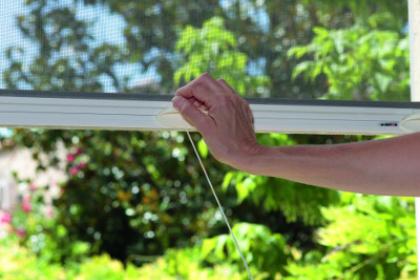 Modèle de moustiquaire enroulable