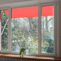 Fenêtre mixte bois aluminium Lille